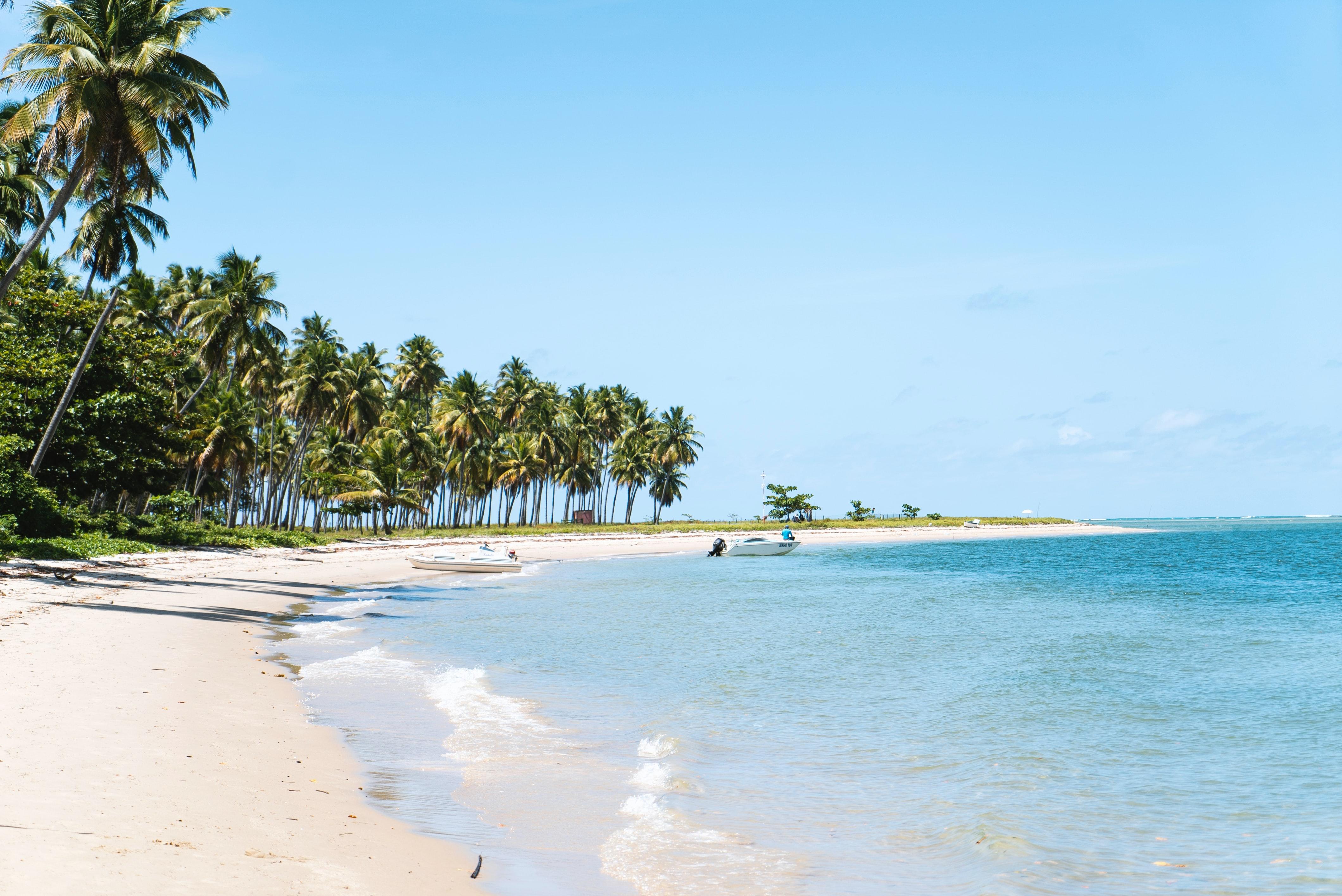 Praia paradisíaca em Pernambuco é opção para feriado do fim de ano.
